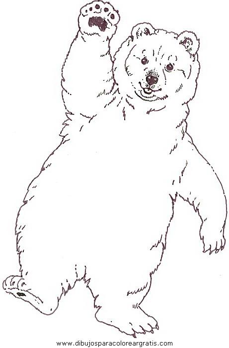 animales/osos/osos_112.JPG