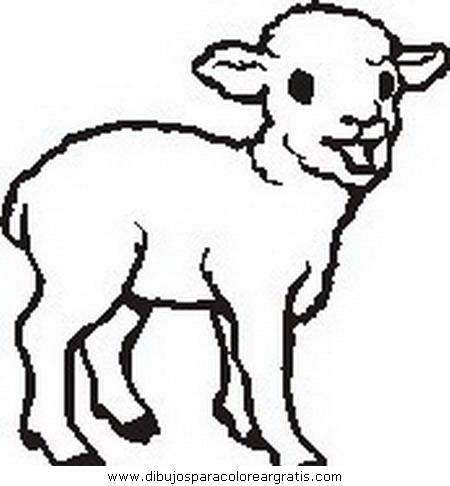 animales/ovejas/ovejas_01.JPG