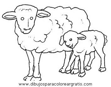 animales/ovejas/ovejas_03.JPG
