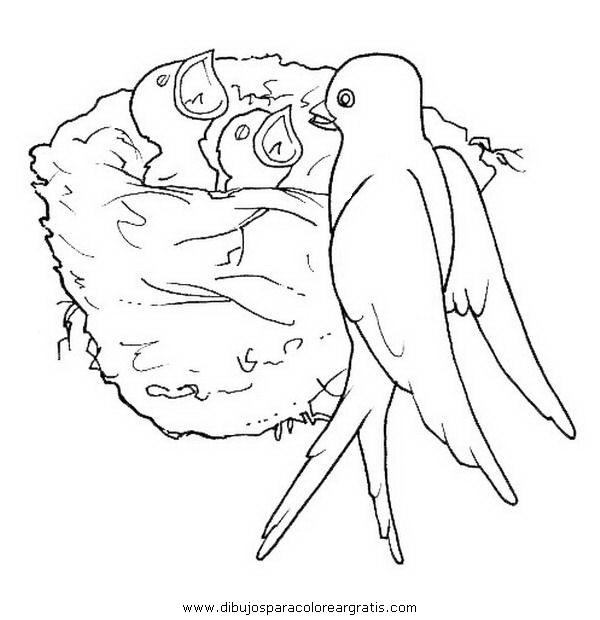 Dibujo de golondrina para colorear - Imagui