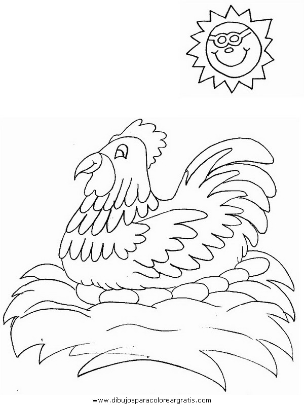 animales/pajaros/hen3.JPG