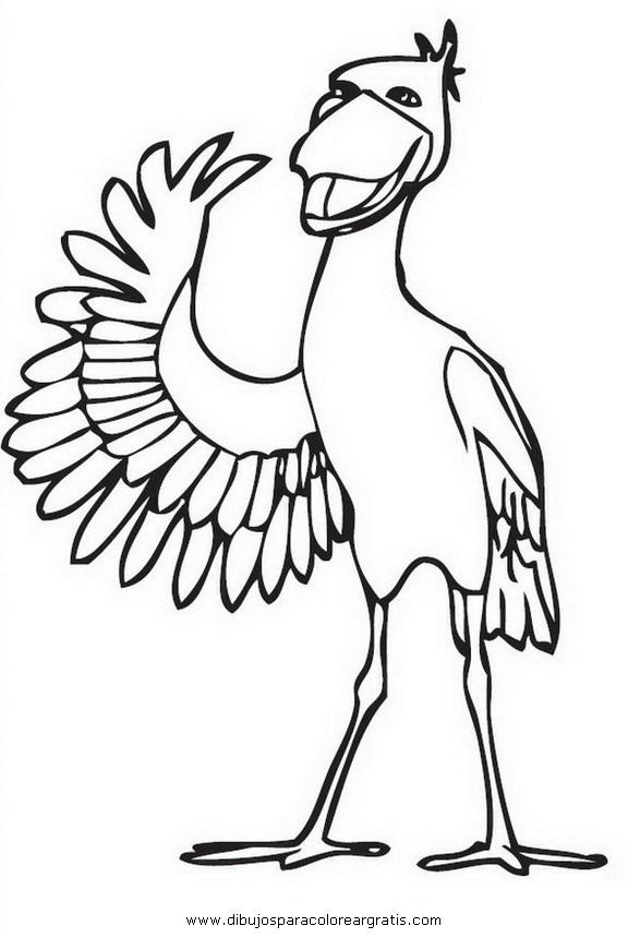 animales/pajaros/pelicano_0.JPG