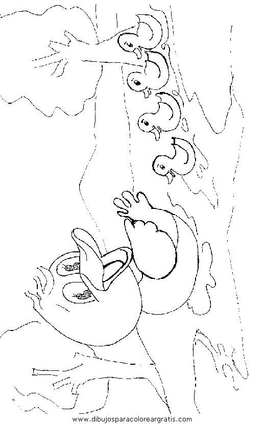 animales/pajaros/uccelli_004.JPG