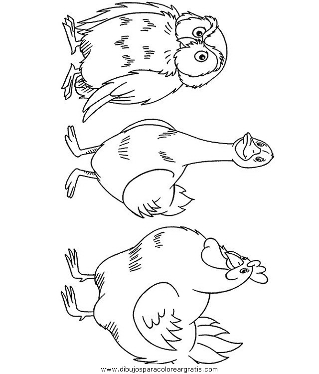 animales/pajaros/uccelli_014.JPG