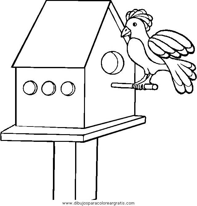 animales/pajaros/uccelli_017.JPG