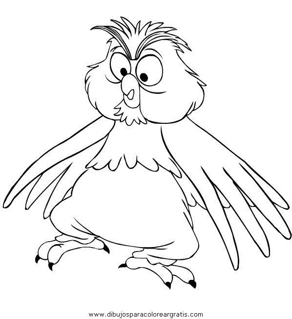 animales/pajaros/uccelli_029.JPG