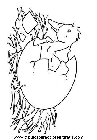 animales/pajaros/uccelli_030.JPG
