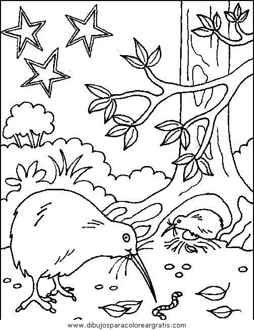 animales/pajaros/uccelli_037.JPG
