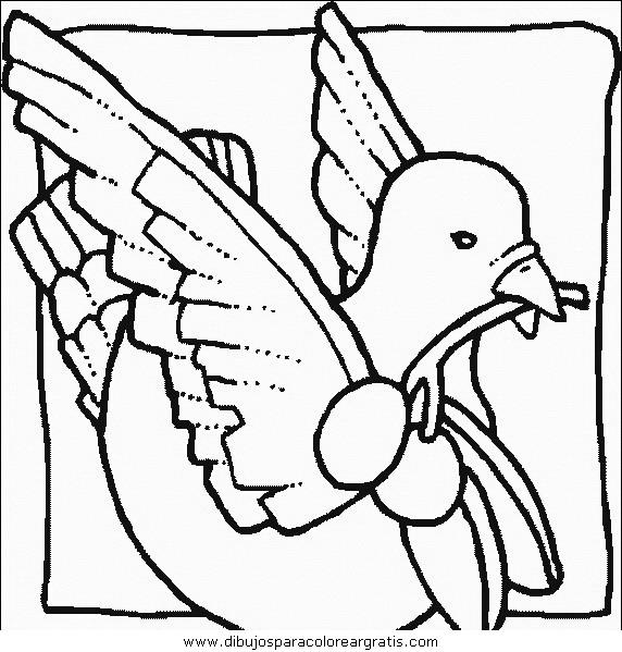 animales/pajaros/uccelli_047.JPG