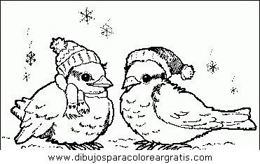 animales/pajaros/uccelli_092.JPG
