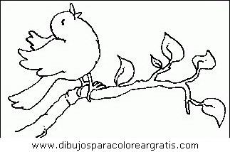 animales/pajaros/uccelli_093.JPG