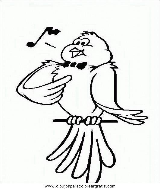animales/pajaros/uccelli_101.JPG