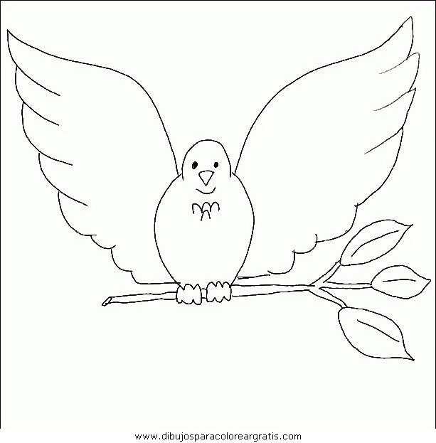 animales/pajaros/uccelli_109.JPG