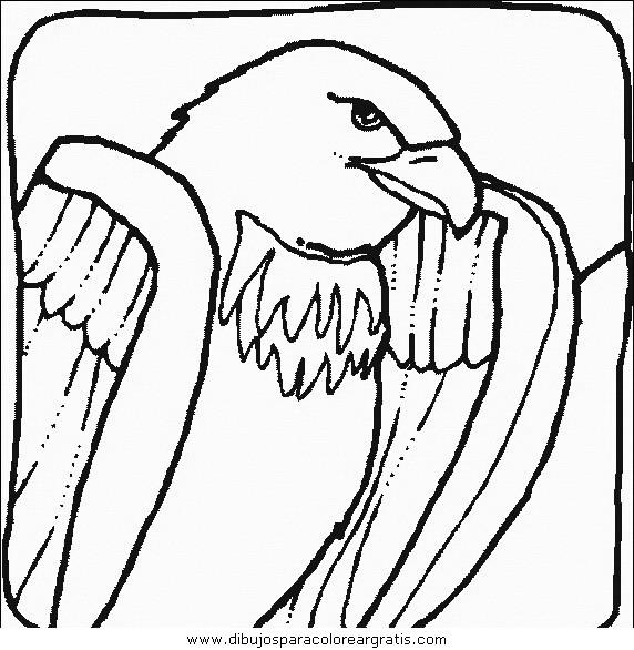 animales/pajaros/uccelli_118.JPG