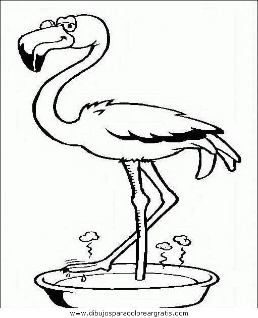 animales/pajaros/uccelli_122.JPG