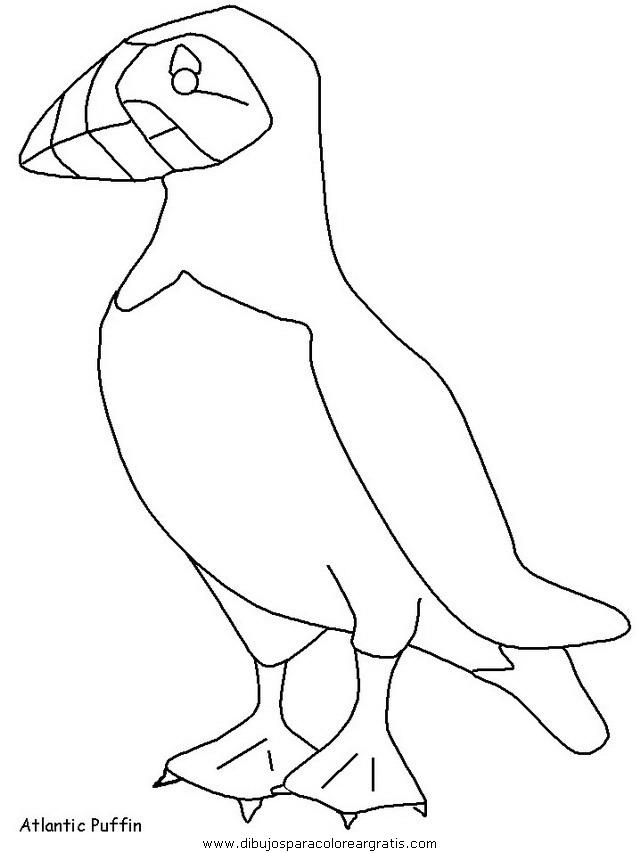 animales/pajaros/uccelli_15.JPG