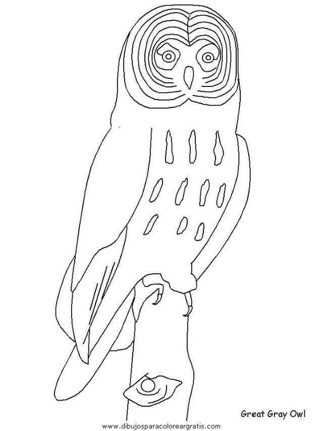animales/pajaros/uccelli_17.JPG