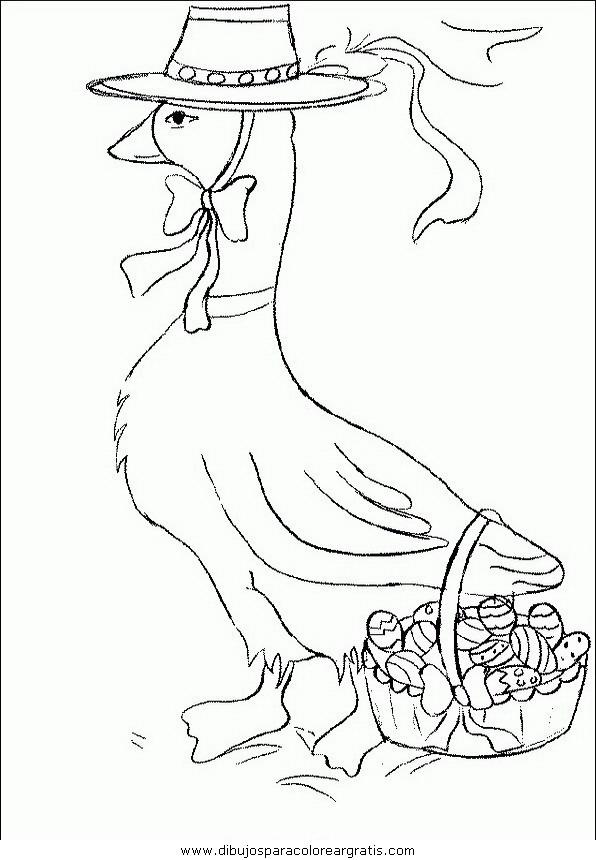 animales/pajaros/uccelli_187.JPG