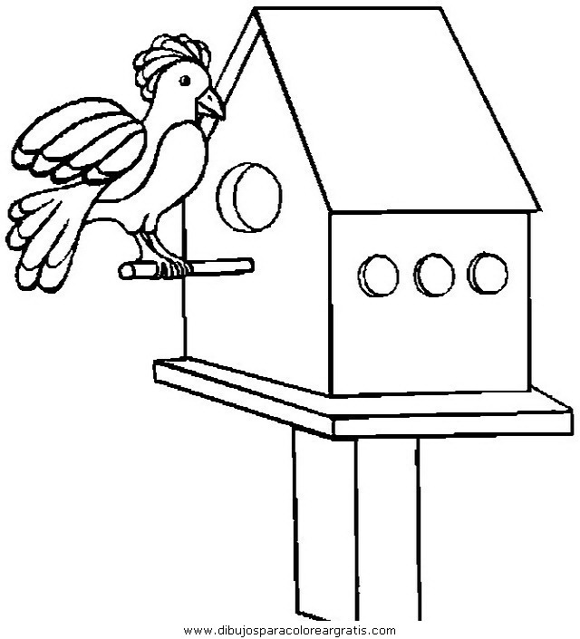 animales/pajaros/uccelli_231.JPG