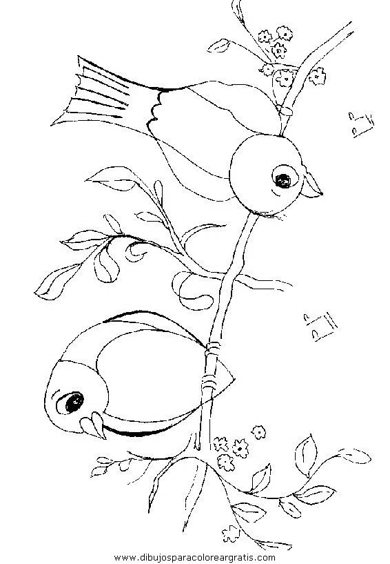 animales/pajaros/uccelli_276.JPG