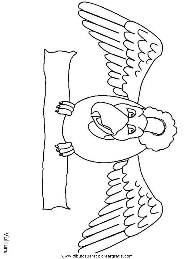 animales/pajaros/vulture.JPG