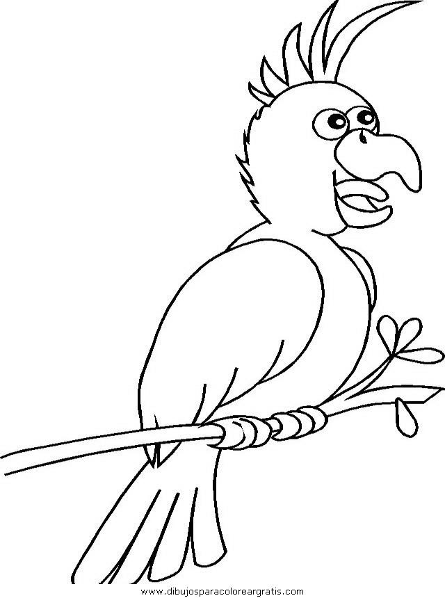 animales/papagayos/papagayos03.JPG