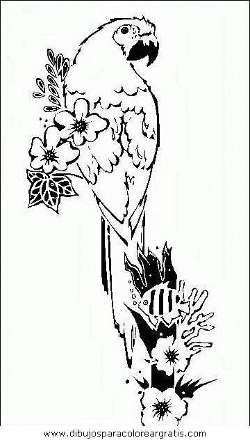 animales/papagayos/papagayos06.JPG