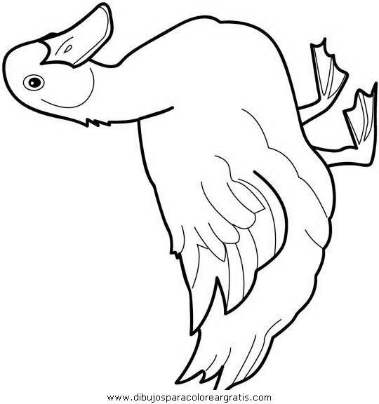 Dibujos Patos 01