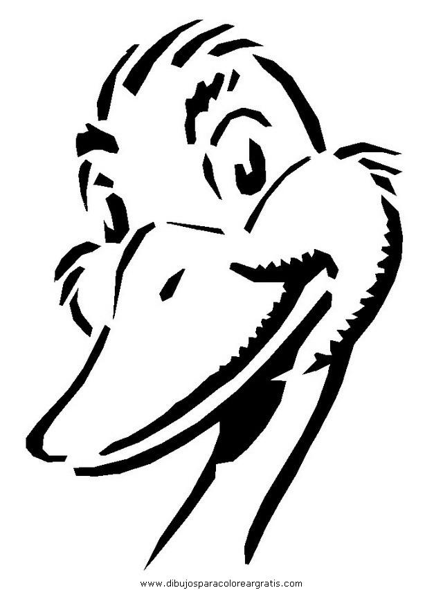 animales/patos/patos_03.JPG