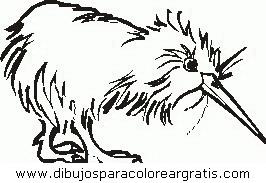 animales/pavos/pavos_36.JPG