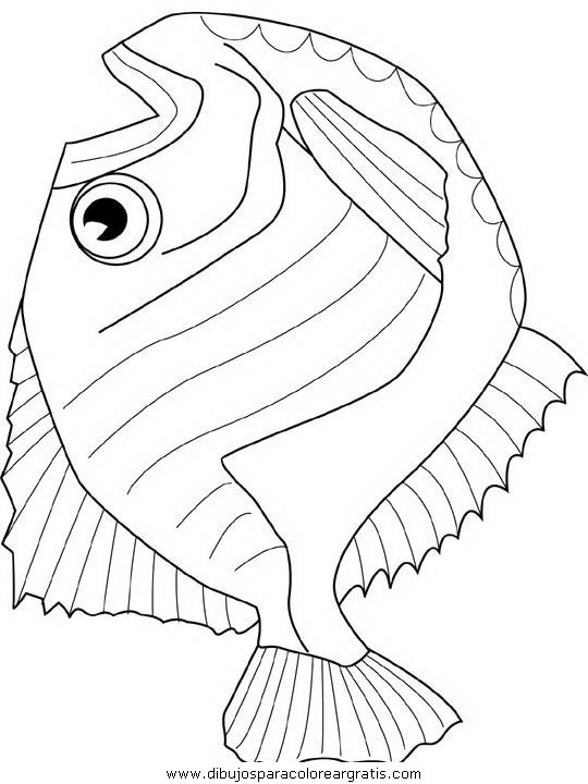 animales/peces/peces_020.JPG
