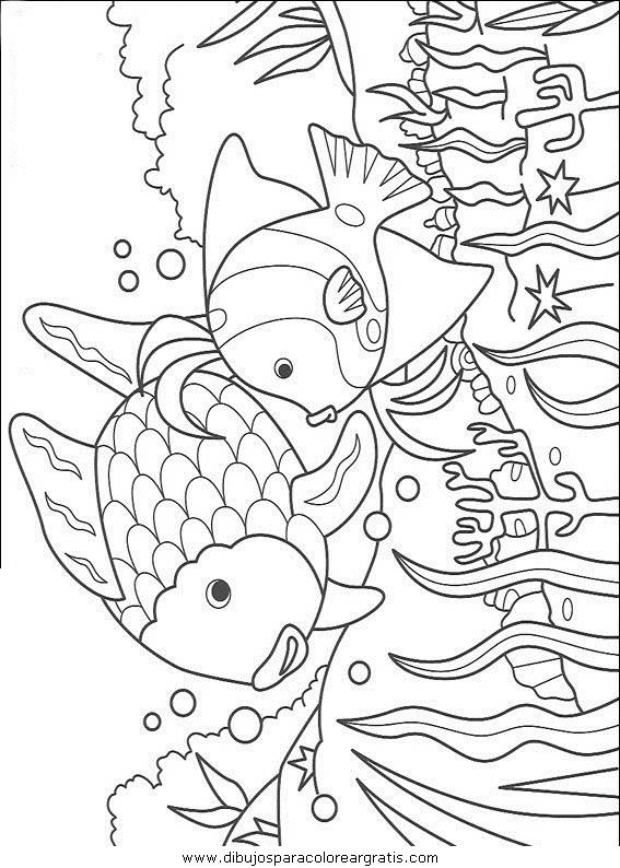 animales/peces/peces_022.JPG