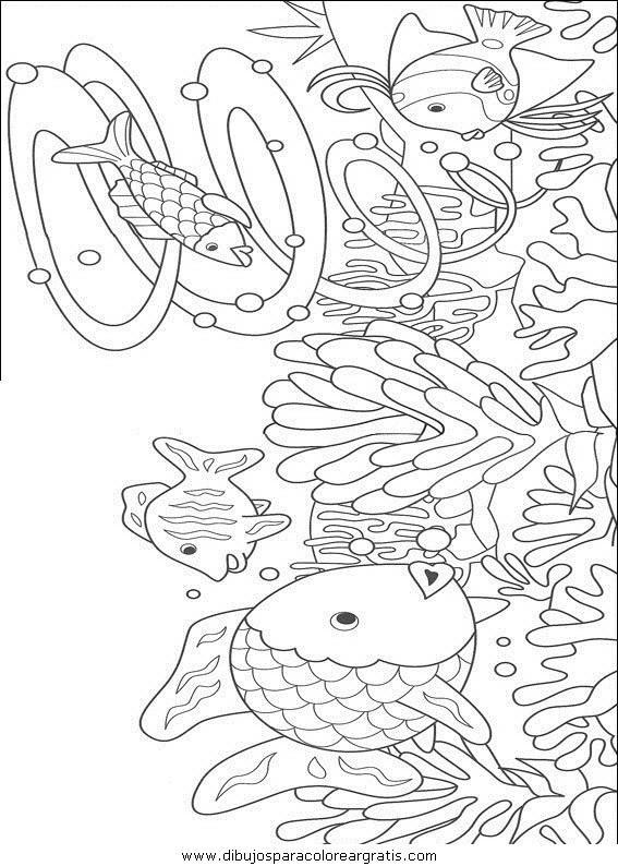 animales/peces/peces_024.JPG