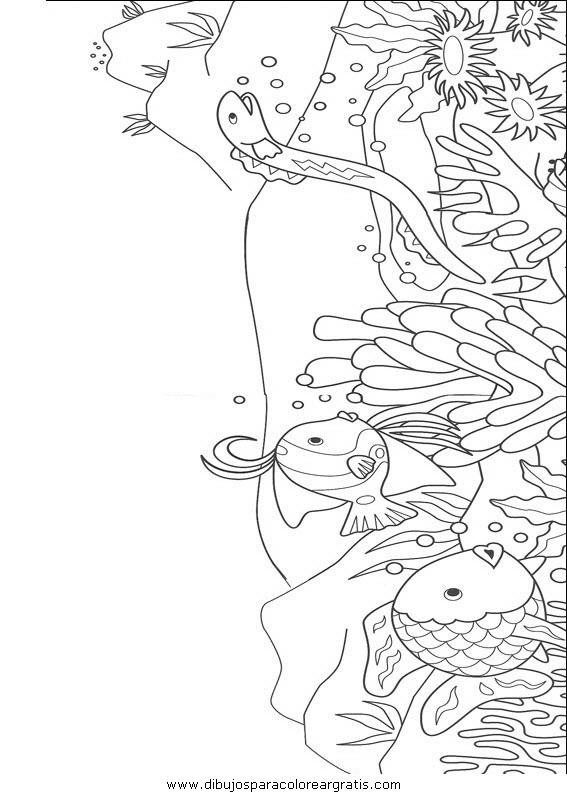 animales/peces/peces_026.JPG