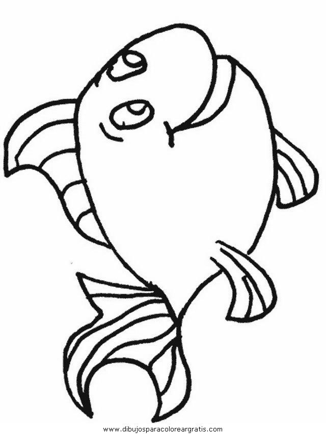 animales/peces/peces_045.JPG