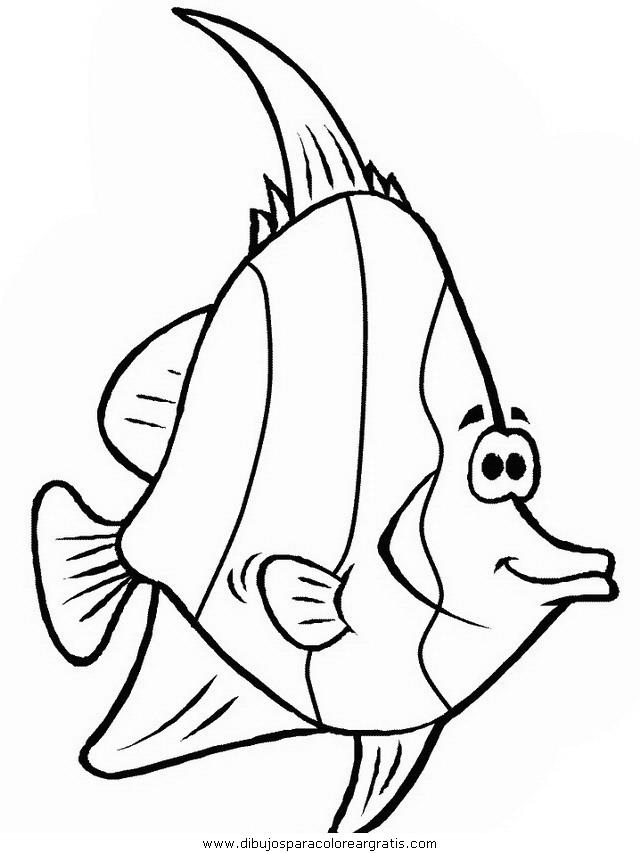animales/peces/peces_048.JPG