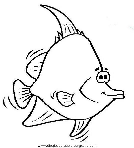 animales/peces/peces_059.JPG