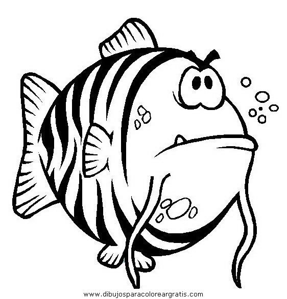 animales/peces/peces_064.JPG