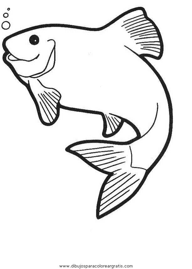animales/peces/peces_065.JPG