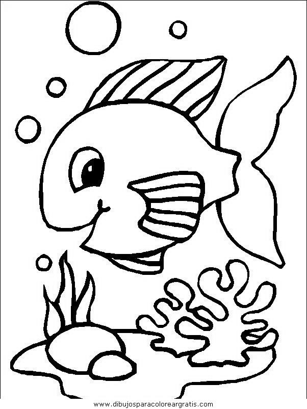 animales/peces/peces_097.JPG