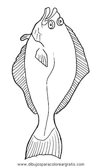 animales/peces/peces_101.JPG