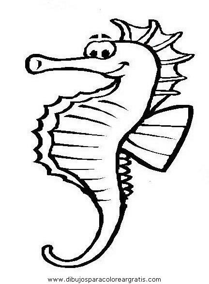animales/peces/peces_107.JPG