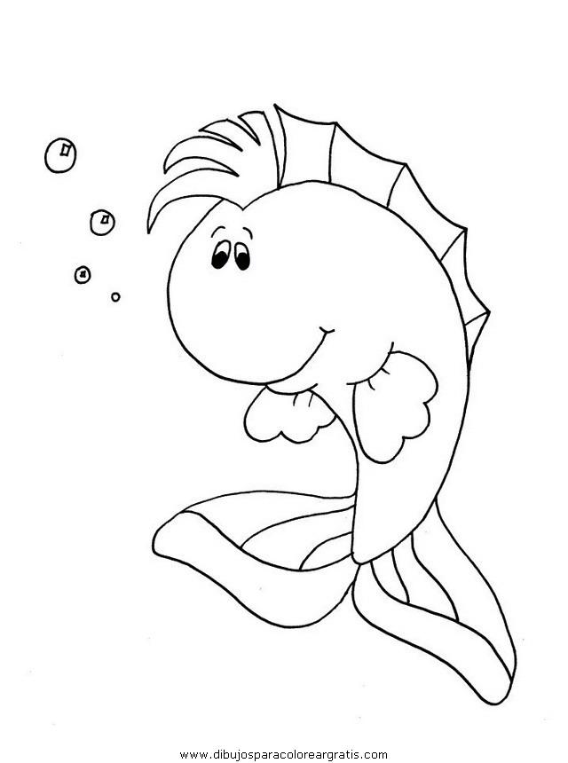 animales/peces/peces_123.JPG