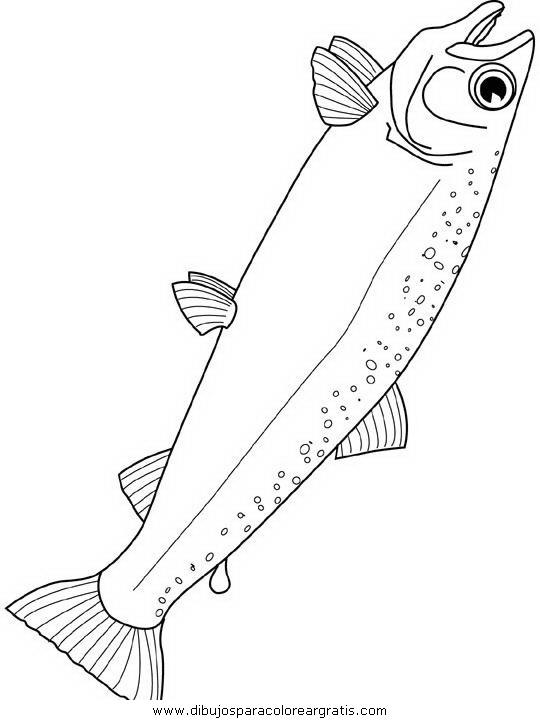 animales/peces/peces_131.JPG