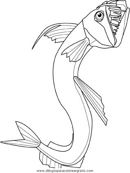 animales/peces/peces_148.JPG