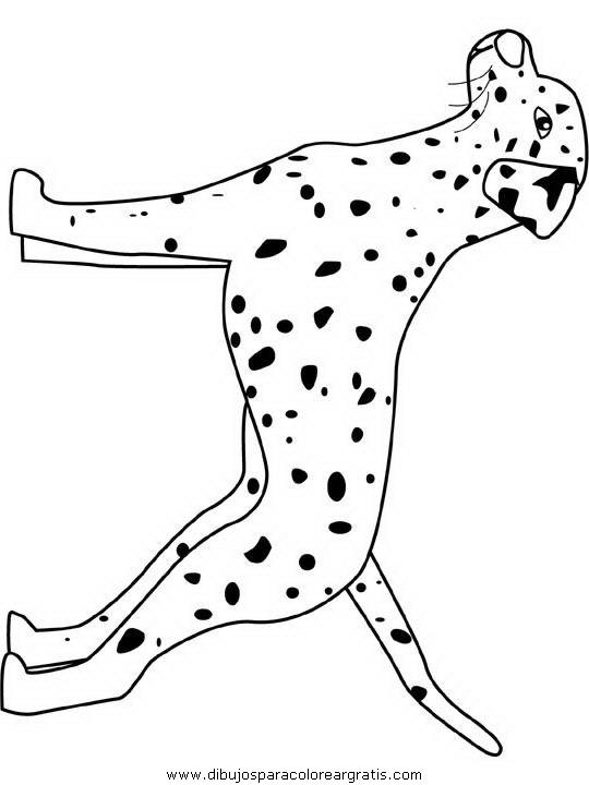 animales/perros/dalmatian.JPG