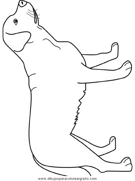 Black lab face coloring pages for Coloring pages labrador
