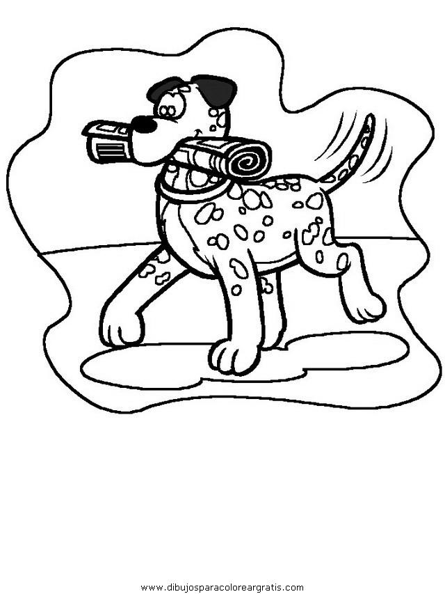 animales/perros/perros_005.JPG