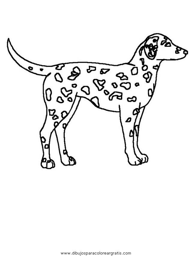 animales/perros/perros_007.JPG