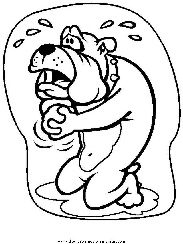 animales/perros/perros_010.JPG